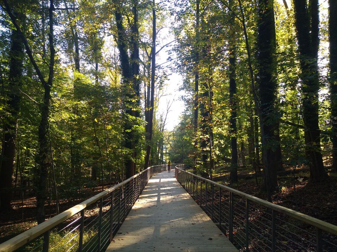 Phase V of the Jones Falls Trail